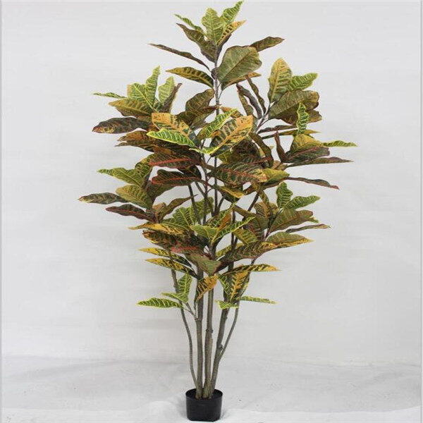 Pianta di Croton artificiale h. 180cm