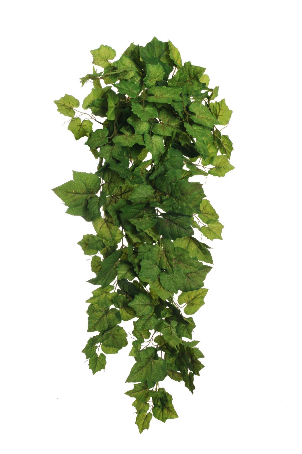 Bush di foglie di vite verde x 12 113 cm