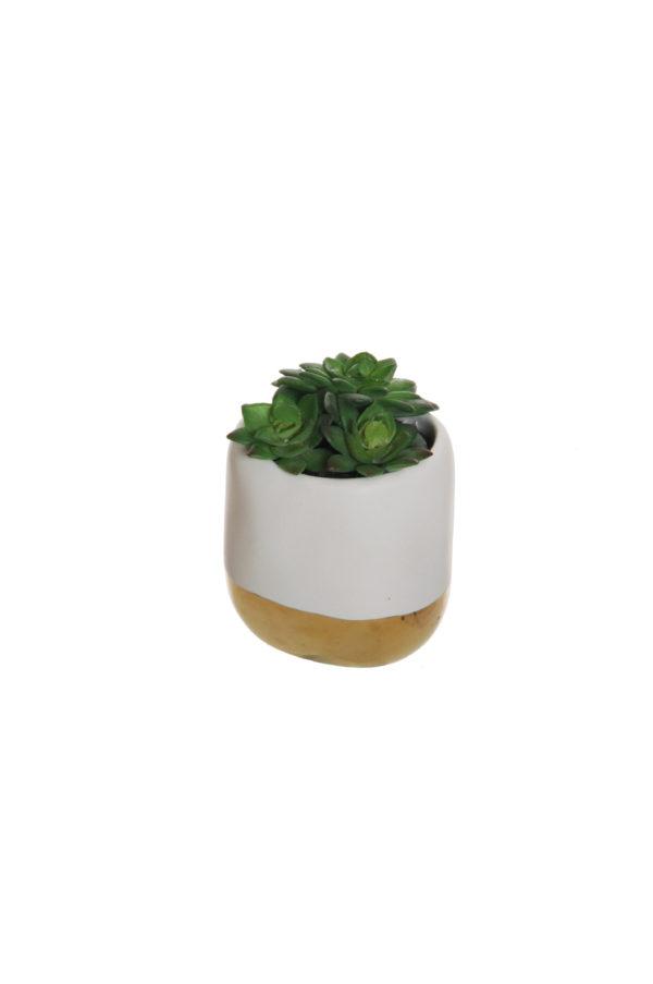 Echeveria artificiale in vaso crema e oro d. 6,5 cm, h. 7,5 cm, 9,5 cm