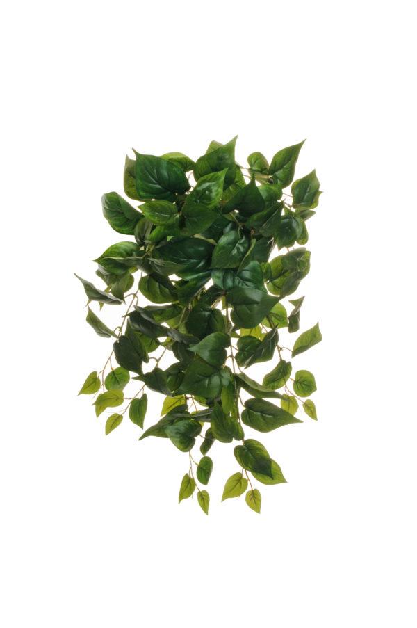 Pianta pendente di philodendro con 10 rami e 120 foglie verde 62 cm