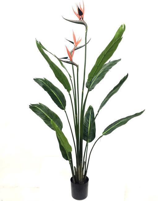Pianta artificiale di sterlizia con vaso h. 120 cm
