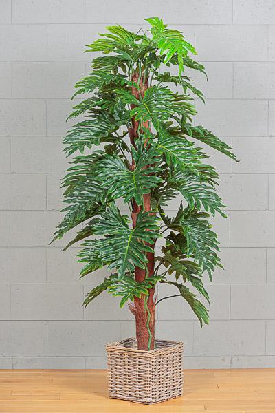 Pianta artificiale di monstera verde con vaso h. 140 cm