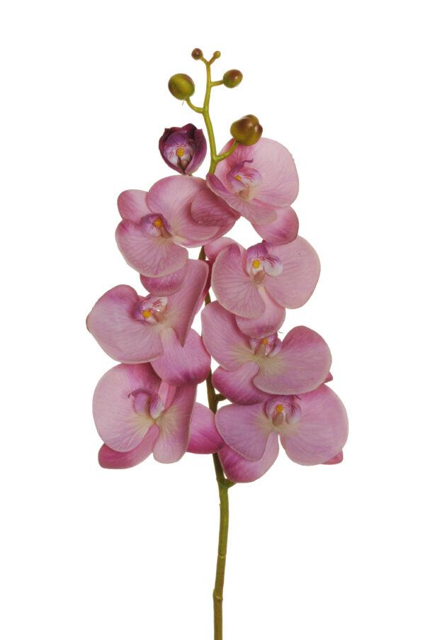 Ramo di orchidea phalenopsis artificiale color malva con 7 fiori real touch, 1 bocciolo aperto e 5 boccioli chiusi 102 cm