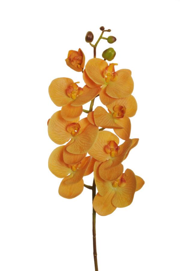 Ramo di orchidea phalenopsis artificiale color giallo mostarda con 7 fiori real touch, 1 bocciolo aperto e 5 boccioli chiusi 102 cm