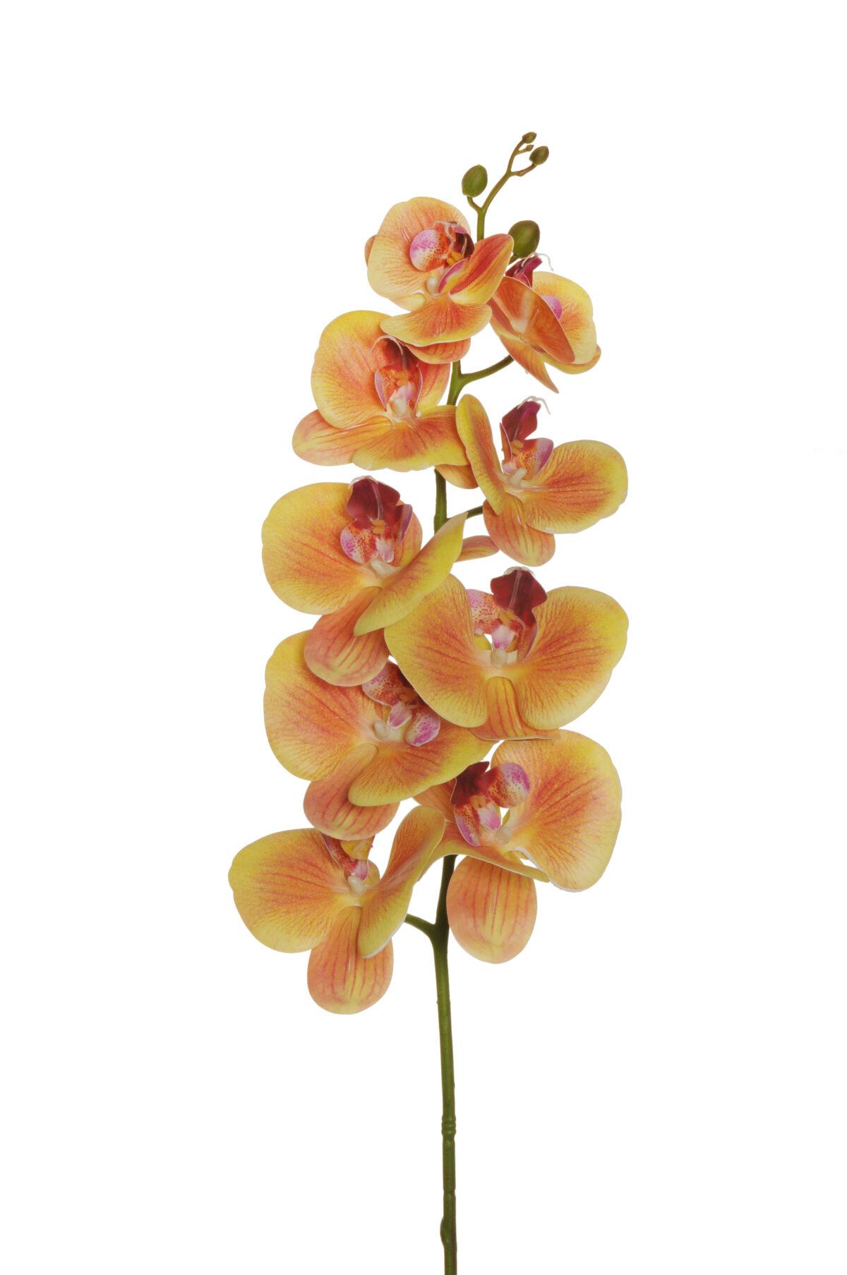 Ramo di orchidea phalenopsis artificiale color arancione con 7 fiori real touch, 1 bocciolo aperto e 5 boccioli chiusi 102 cm
