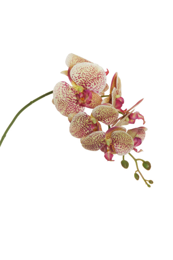 Ramo di orchidea phalenopsis artificiale dipinta in 3D color viola chiaro e giallo con 6 fiori real touch (2 grandi, 4 piccoli) , 1 bocciolo aperto e 5 boccioli chiusi 79 cm