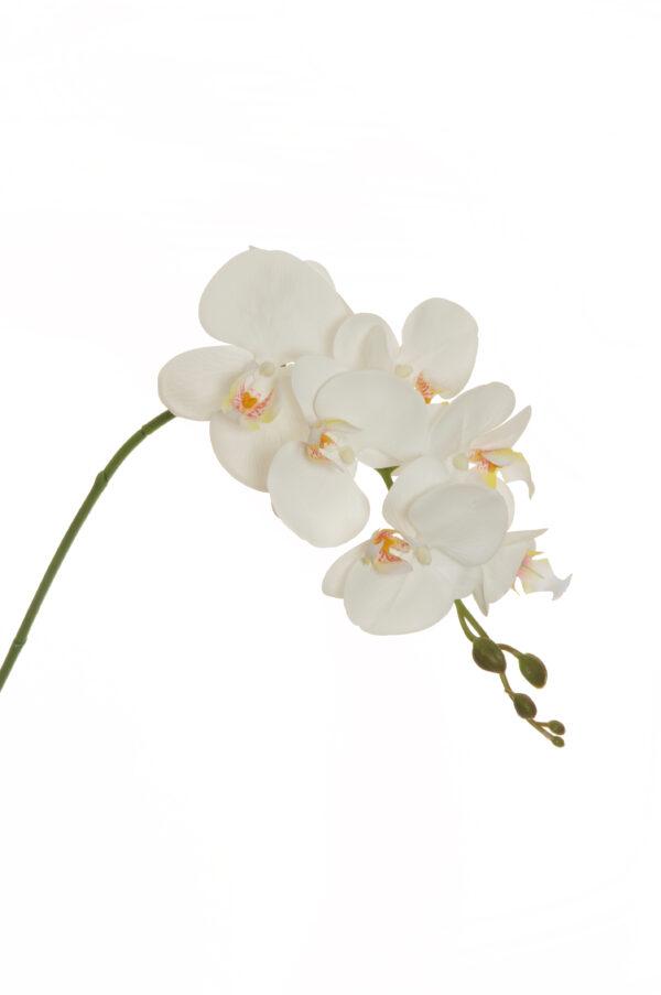 Ramo di orchidea phalenopsis artificiale dipinta in 3D di colore bianco con 6 fiori real touch (2 grandi, 4 piccoli) , 1 bocciolo aperto e 5 boccioli chiusi 79 cm