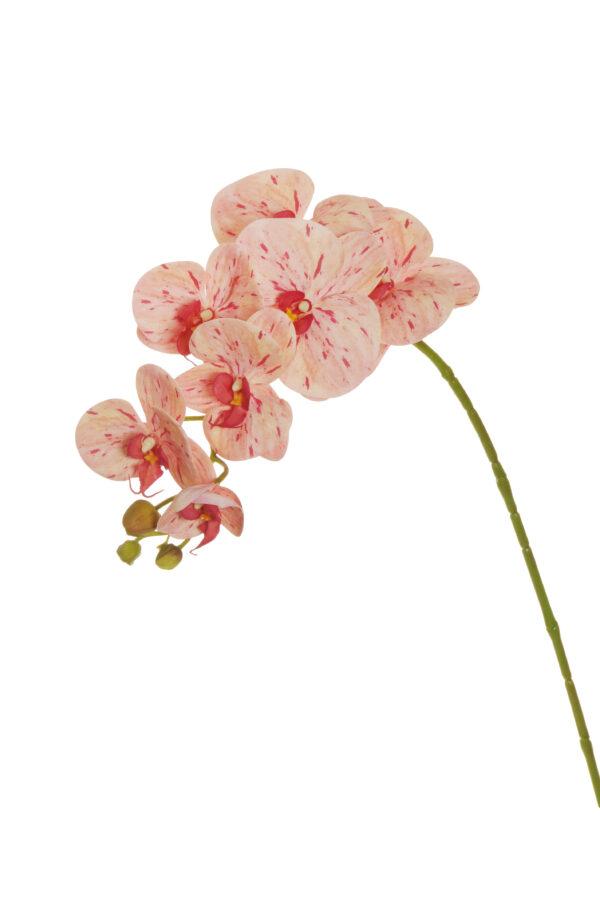 Ramo di orchidea phalenopsis artificiale dipinta in 3D di colore rosa e fuchsia con 7 fiori 77 cm