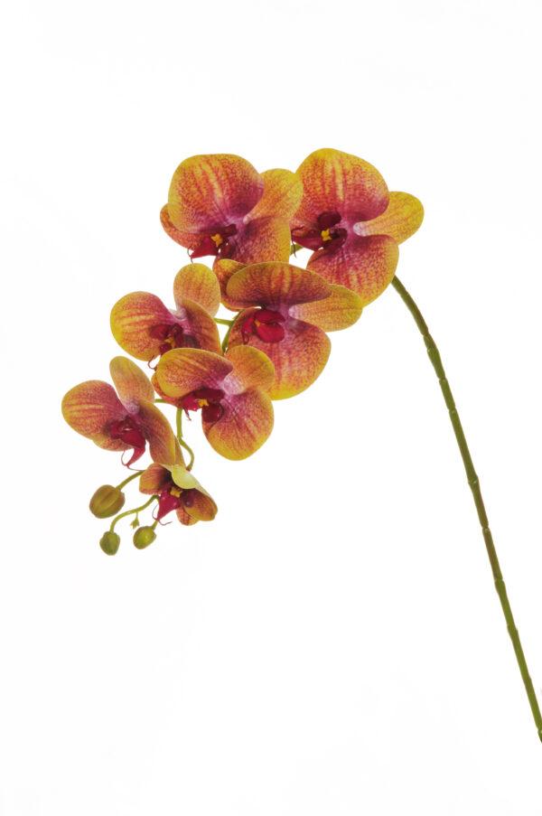 Ramo di orchidea phalenopsis artificiale dipinta in 3D di colore giallo e fuchsia con 7 fiori 77 cm