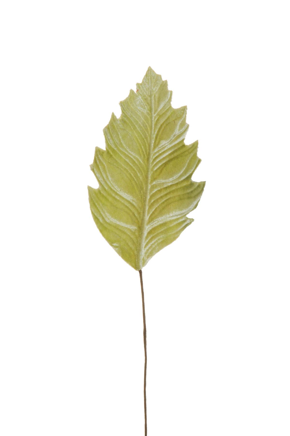 Set di 6 foglie philodendro artificiali in velluto color verde chiaro d. 21 x 12 cm