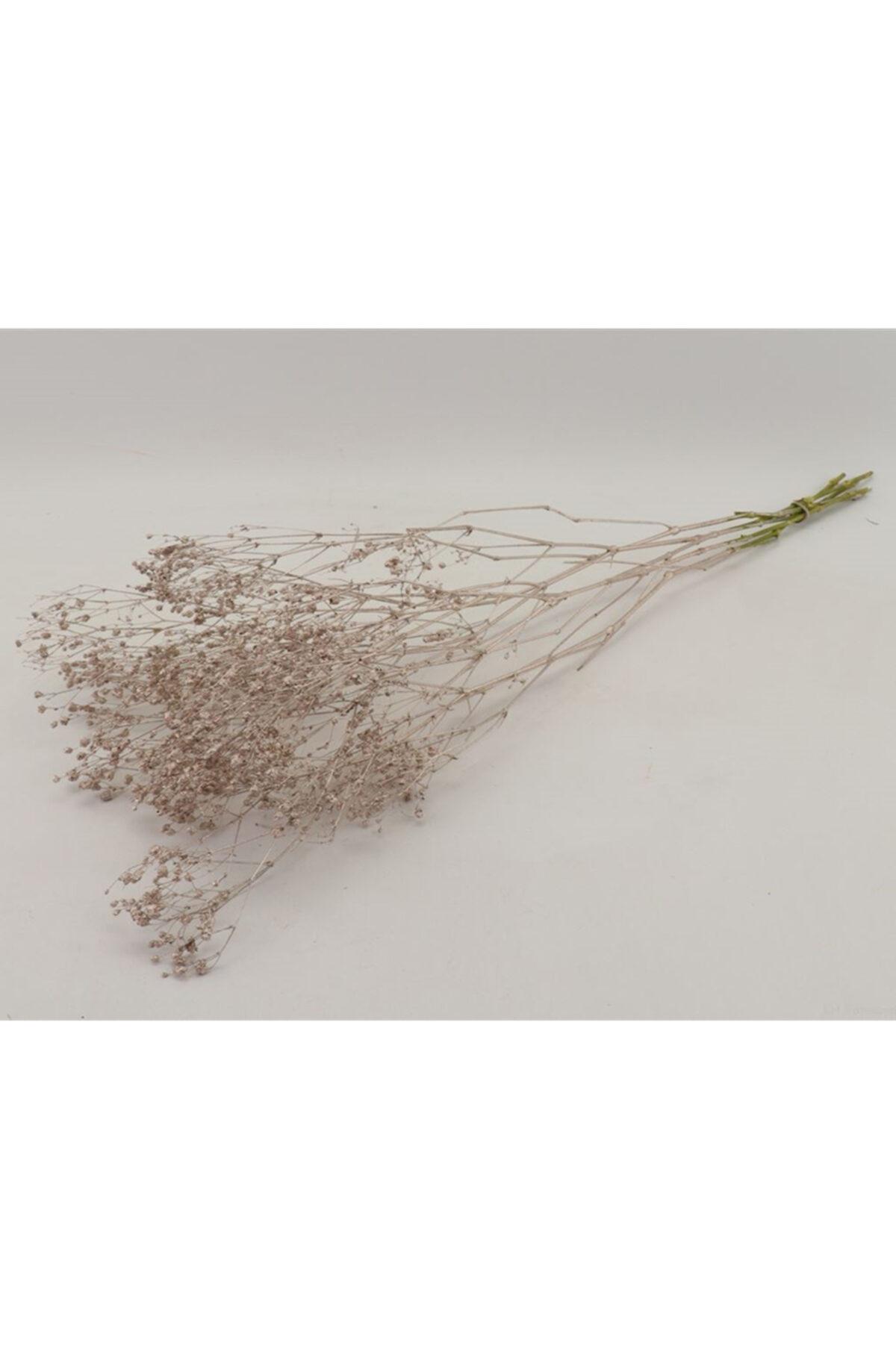 Mazzo di Gypsophila (fiore nella nebbia o velo di sposa) secco e stabilizzato color champagne