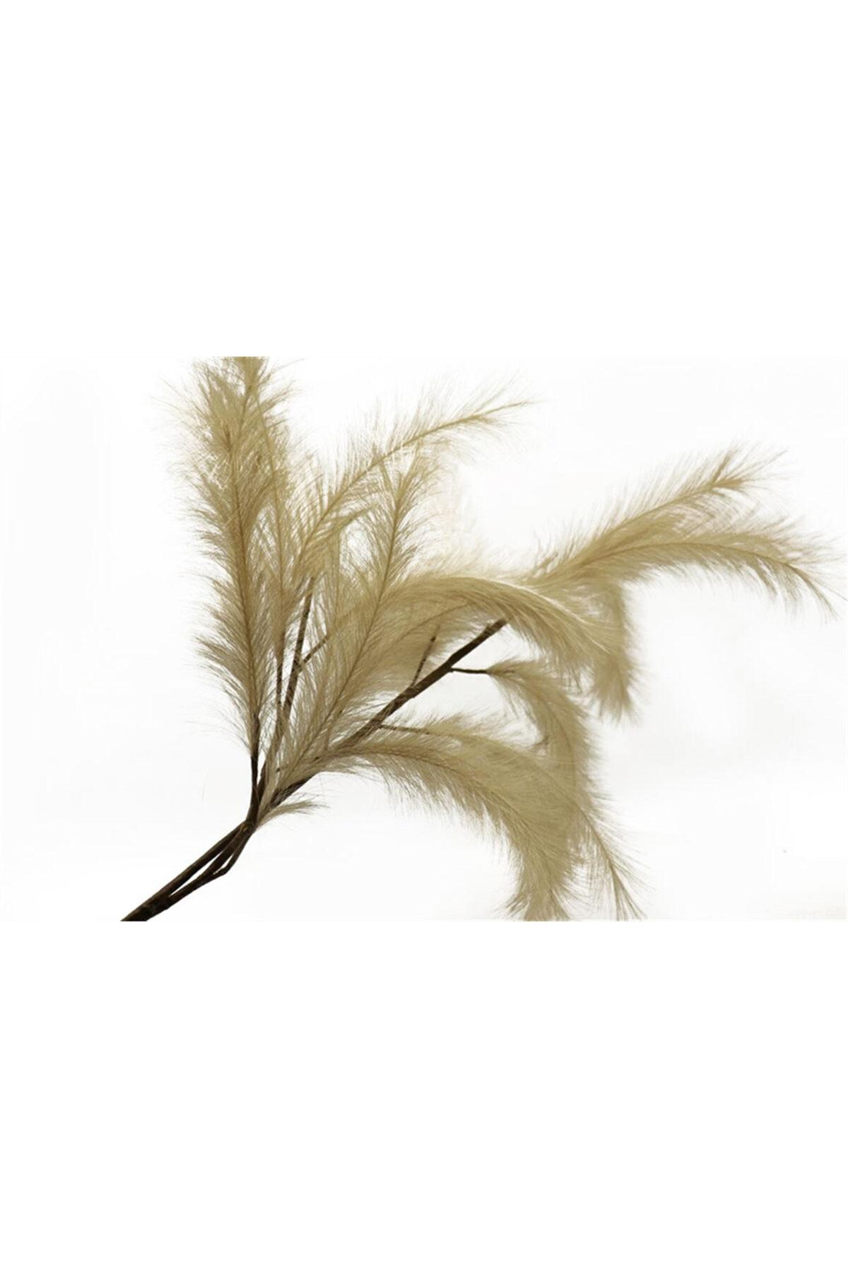 Stelo d'erba essiccata e stabilizzata color caffè naturale l. 100 cm