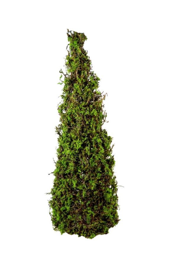 Albero natalizio a forma di cono con foglie verdi e rametti di bonsai e muschio essiccati e stabilizzati 165 cm