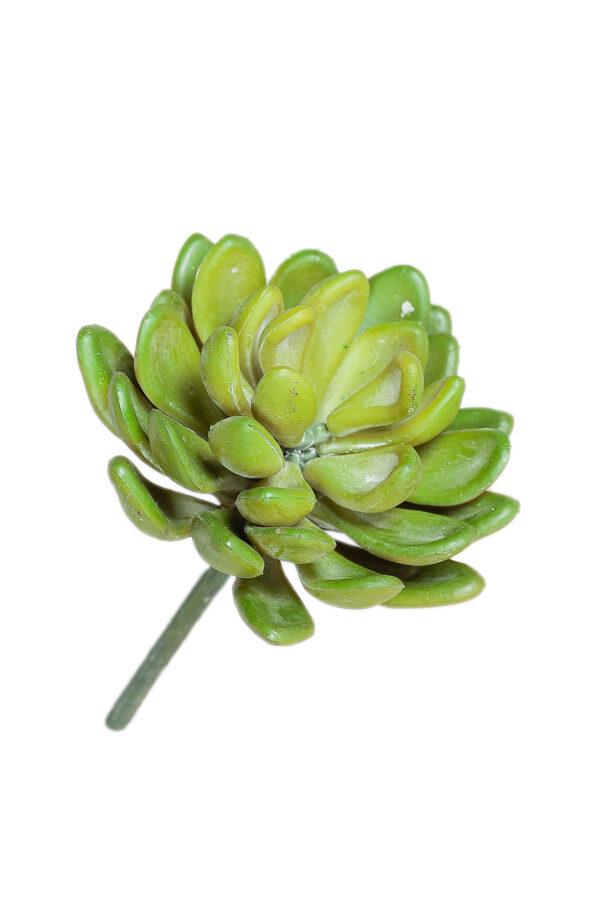 Pianta grassa succulenta artificiale verde da invasare 11 cm