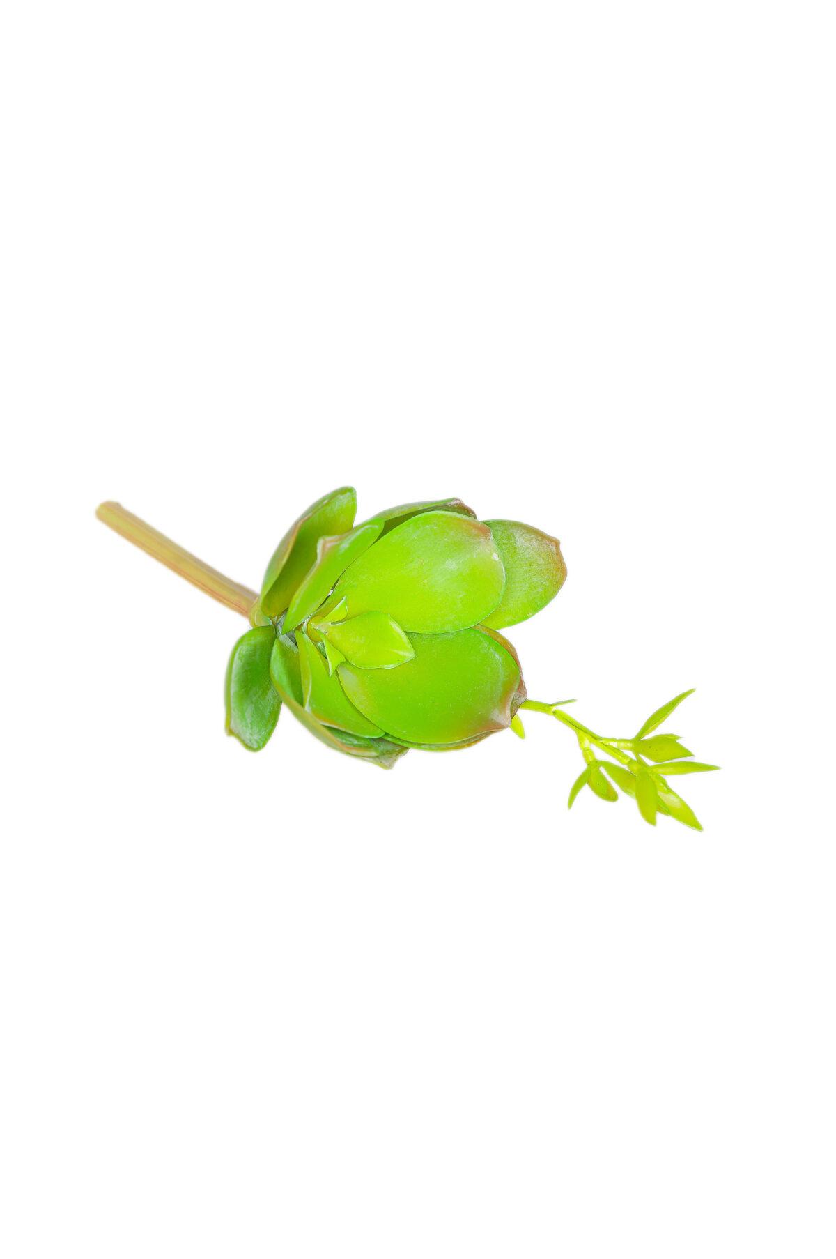 Pianta grassa succulenta artificiale verde da invasare 20 cm