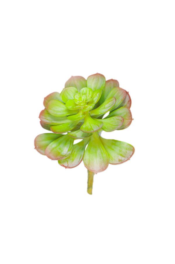 Pianta grassa succulenta artificiale verde da invasare 15 cm