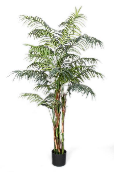 Pianta Artificiale Palma Kentia o palma di paglia con 862 foglie verdi in vaso nero di plastica rigida h. 150 cm