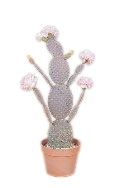 Pianta artificiale di Cactus con fiori rosa con vaso in plastica rigida 25 x 17,5 x 71 cm