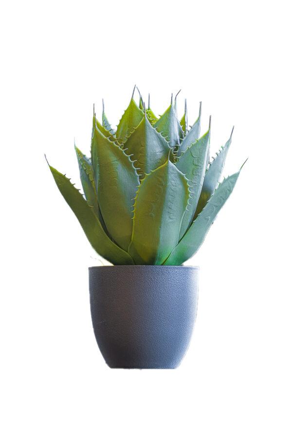 Pianta artificiale di Aloe con foglie verdi in vaso nero di plastica rigida 22 x h. 56 cm