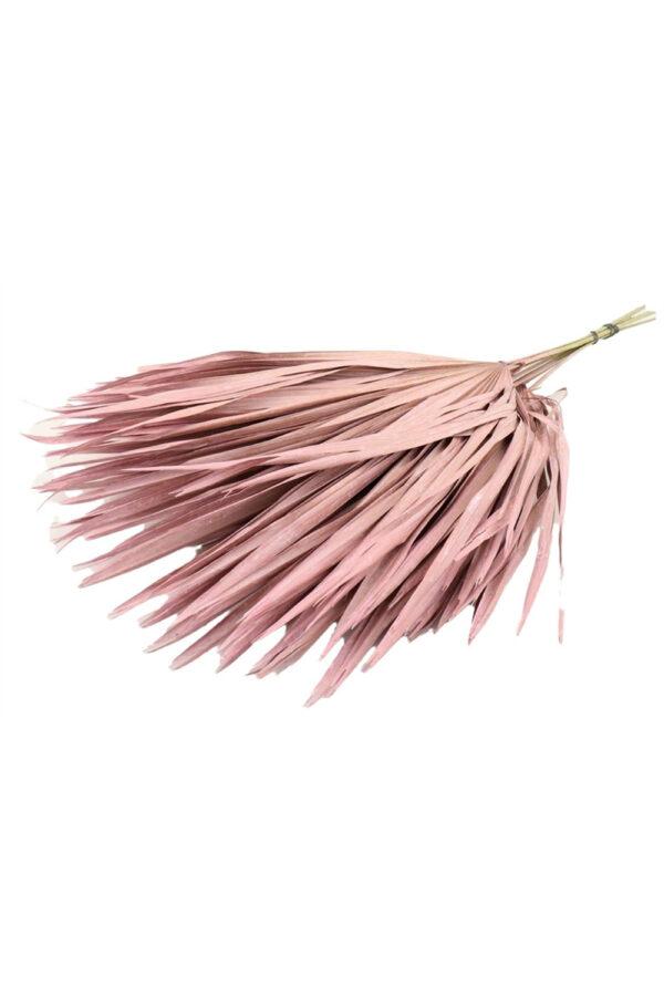 Mazzo composto da 10 foglie di Palma Chamaerops essiccata e stabilizzata di colore rosa