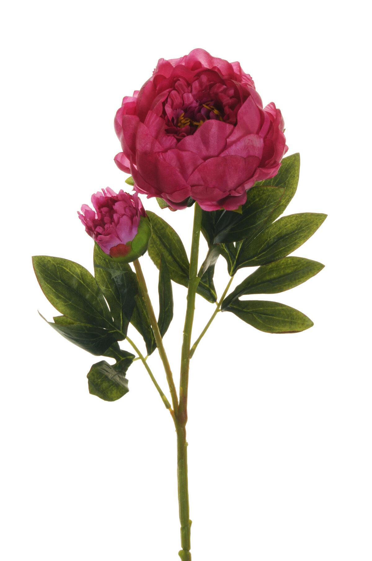 Ramo Peonia artificiale con 1 fiore e 1 bocciolo fuchsia 66 cm