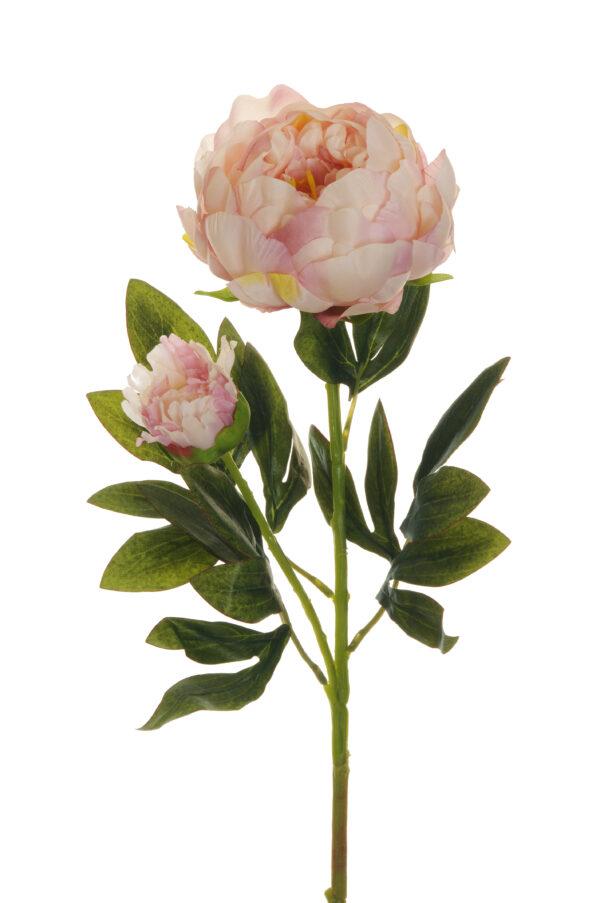 Ramo Peonia artificiale con 1 fiore e 1 bocciolo color rosa crema 66 cm