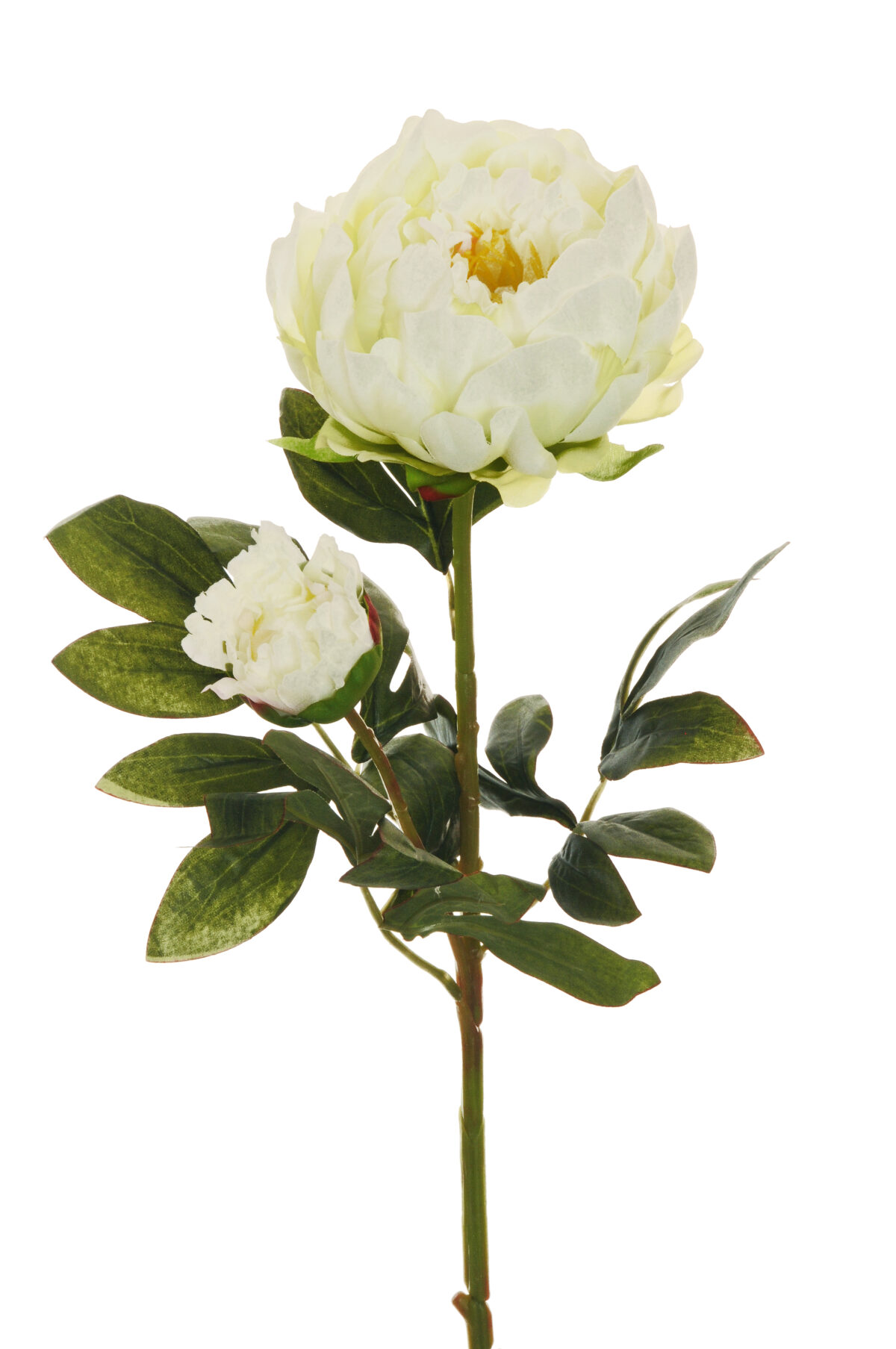 Ramo Peonia artificiale con 1 fiore e 1 bocciolo colore bianco 66 cm