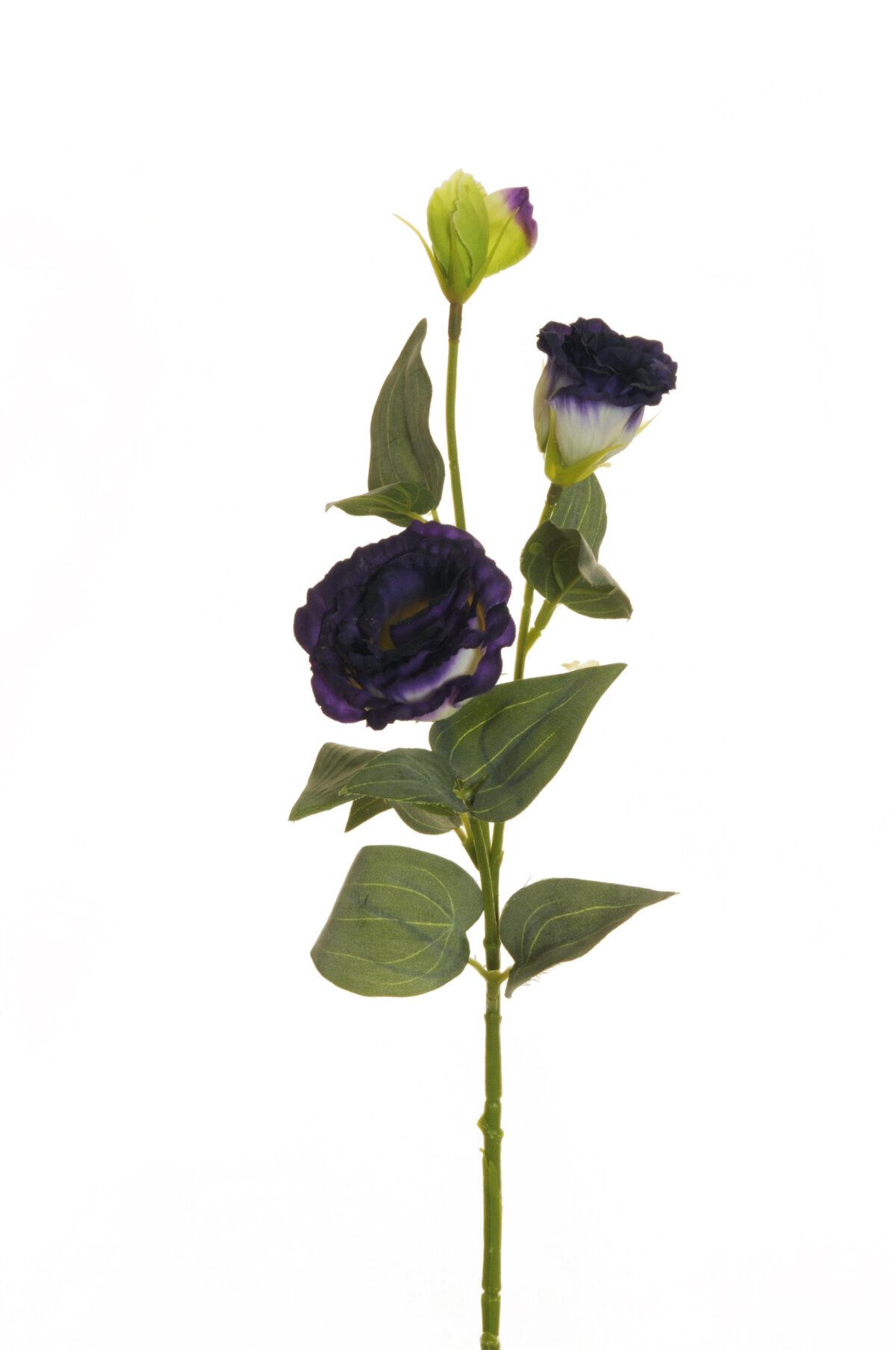 Ramo di Lisianthus artificiale con 2 fiori e 1 bocciolo viola e crema 71 cm