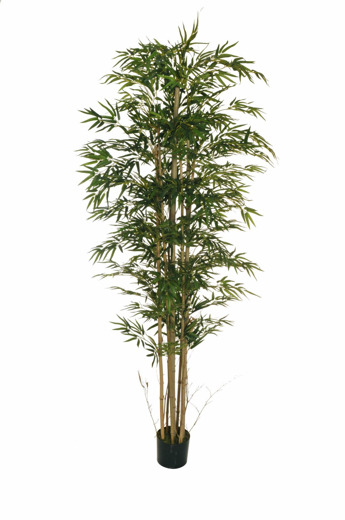 Pianta di Bamboo artificiale h. 210 cm con 2700 foglie e 10 tronchi naturali