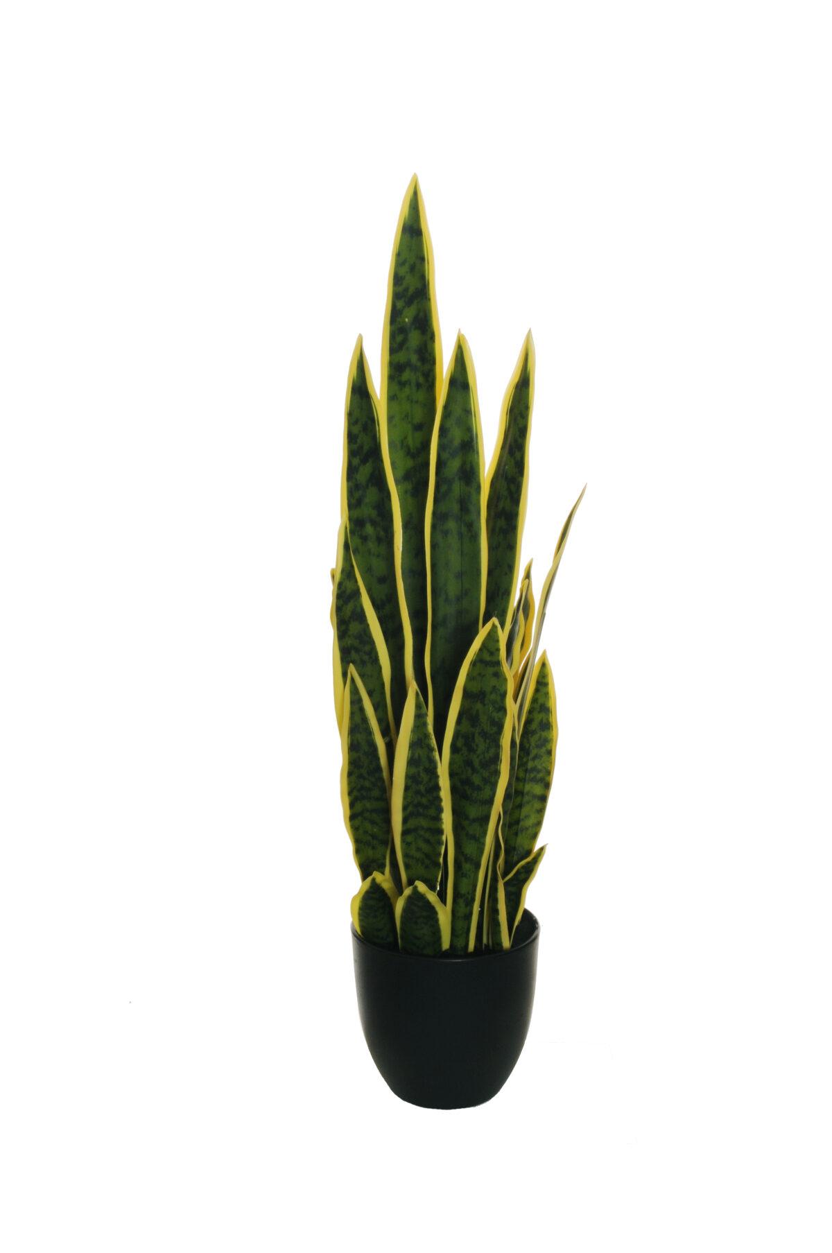 """Pianta artificiale Sanseveria Dracena o """"lingua di suocera"""" foglie verdi e gialle in vaso nero di plastica rigida h. 70 cm"""
