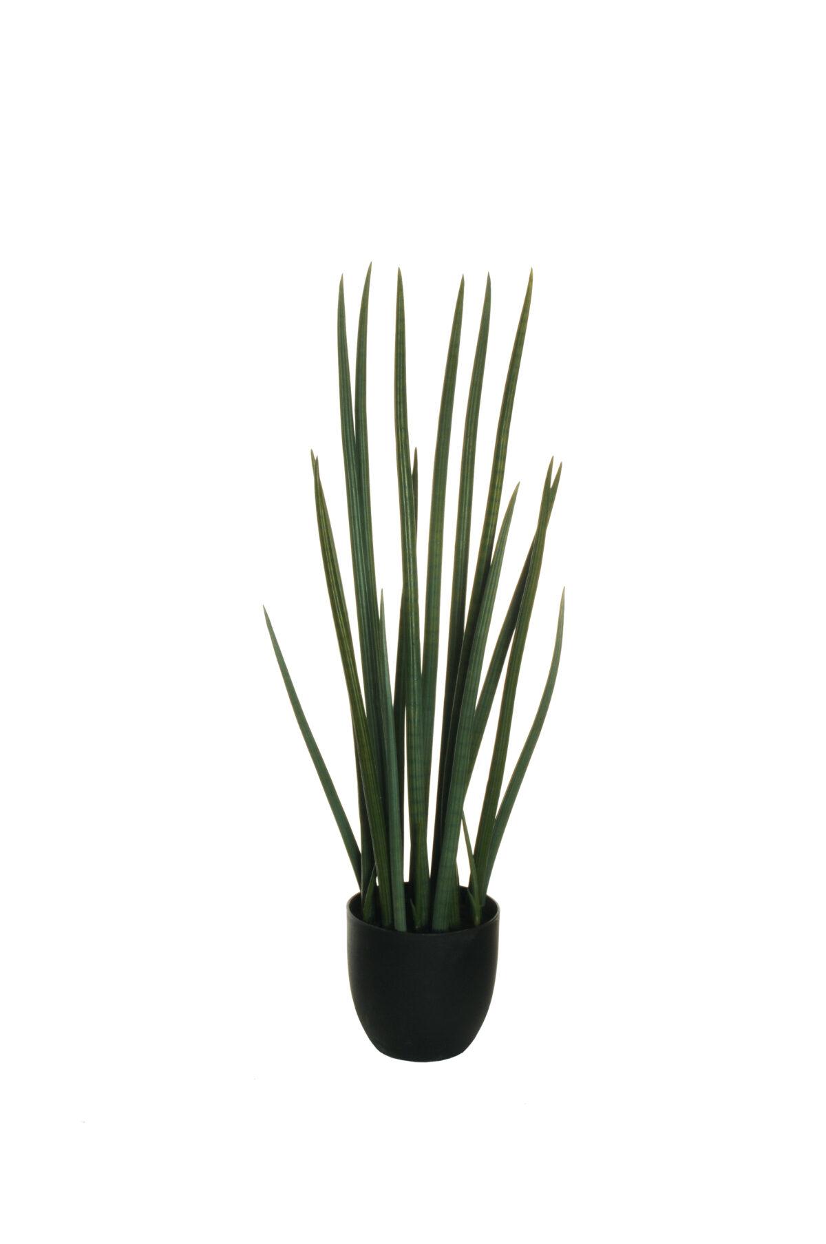 Pianta artificiale Sanseveria Cilindrica con 21 foglie h. 87 cm (vaso plastica d.17cm h.16cm)