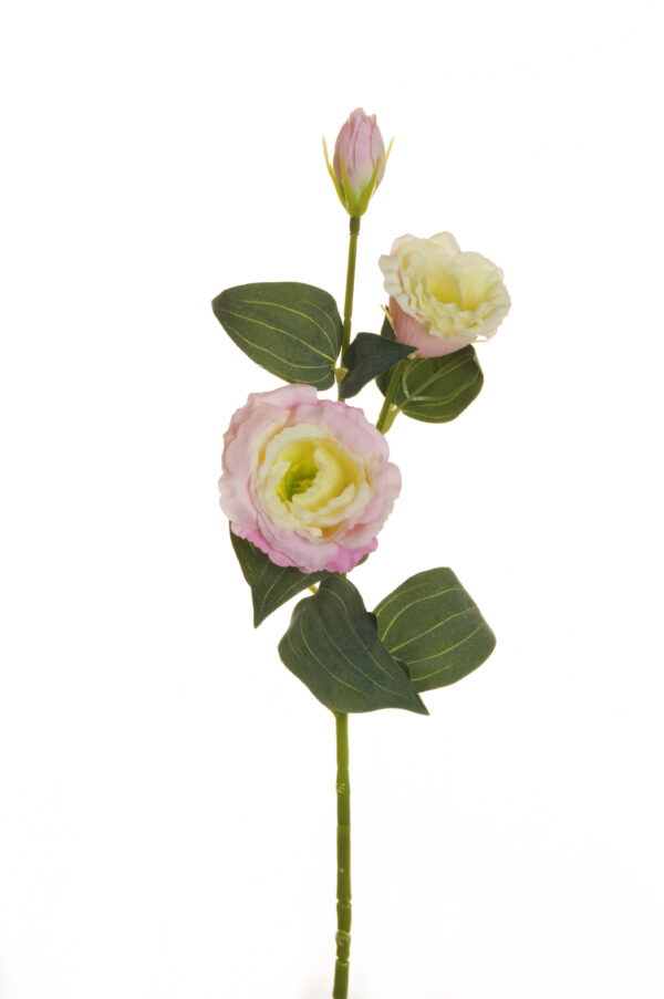 Ramo di Lisianthus artificiale con 2 fiori e 1 bocciolo color rosa crema 71 cm