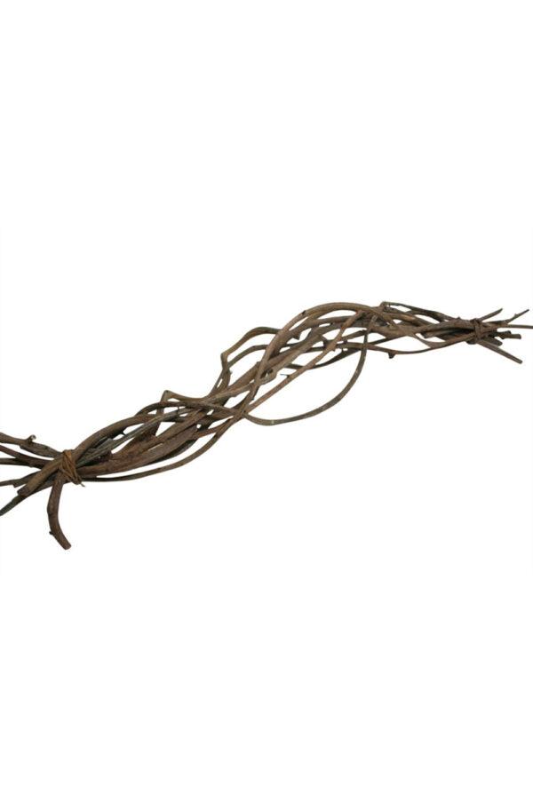 Fascina 10 Rami naturali ed essiccati l. 60 cm
