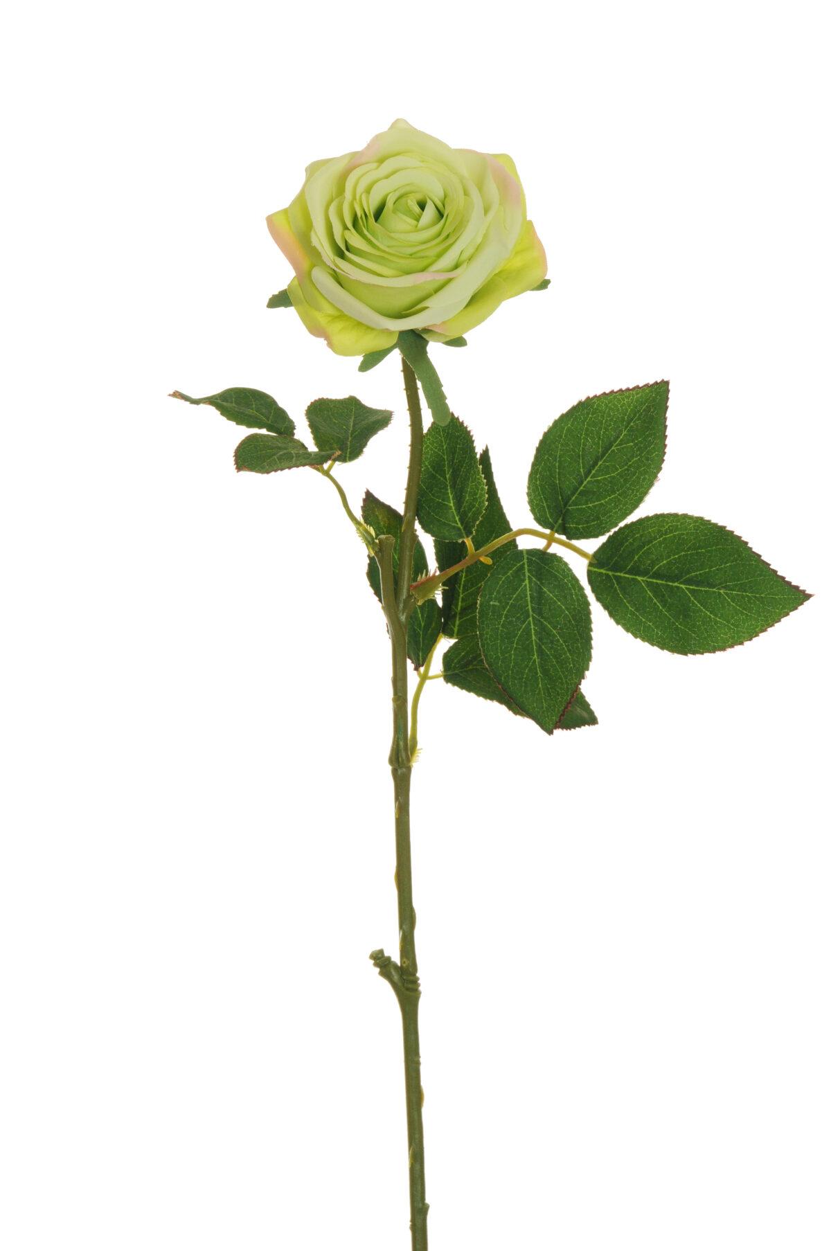 Stelo Rosa dell'Ecuador artificiale disponibile in tantissimi colori 65 cm