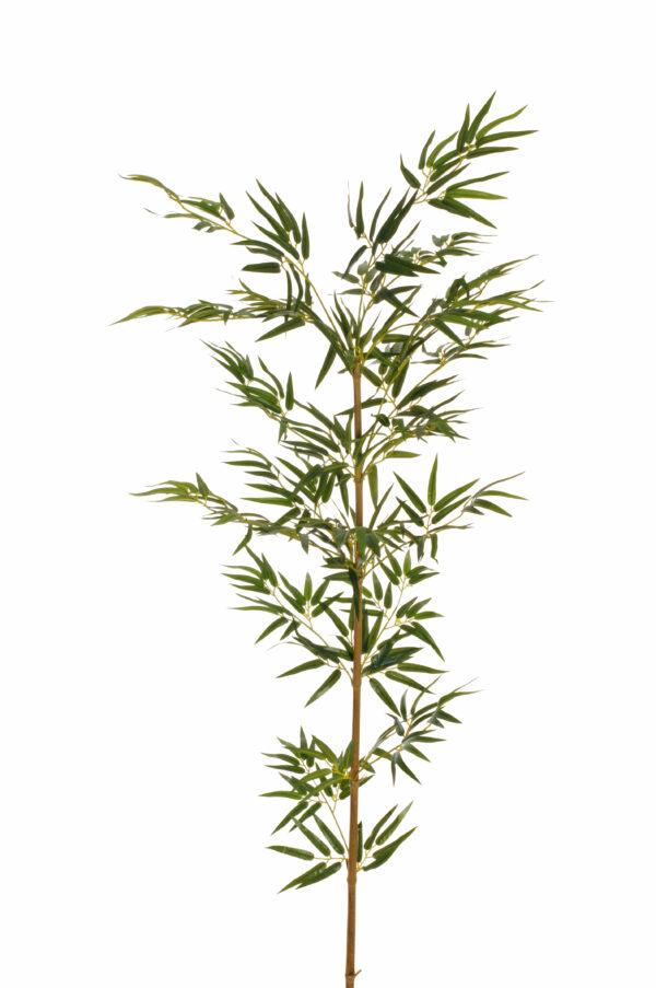 Canna di Bamboo vera con 450 foglie artificiali 160 cm.